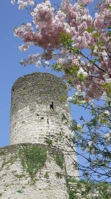 château (9)
